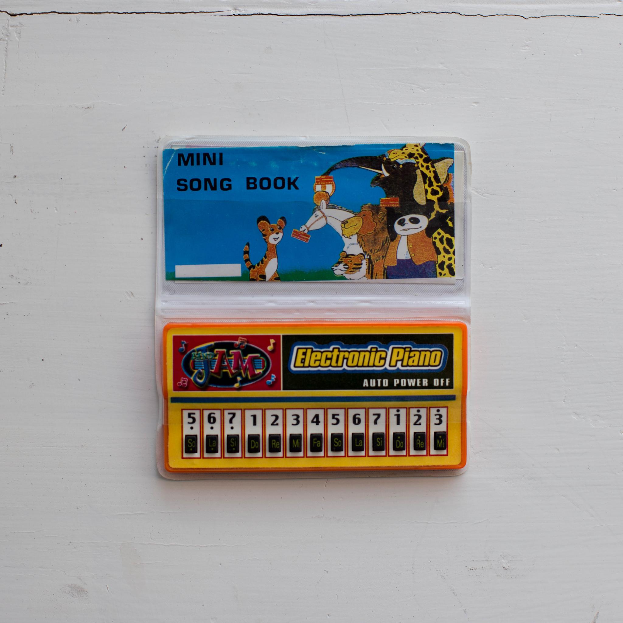 Electron ECHO Mini Piano (Kontakt, Ableton Live, SFZ